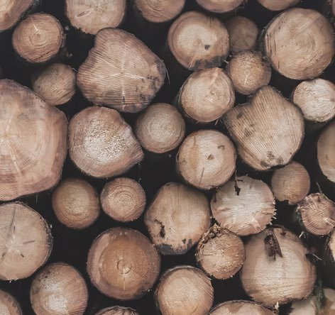 bois de construction